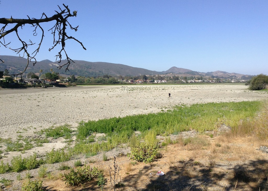 In California, the Idea of a Drought Shapes Up