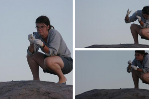 Science sometimes means juggling cheetah poop. Source: @AnneWHilborn