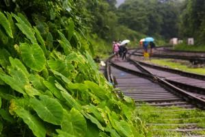 Monsoons. Credit: premnath/Flickr, CC BY 2.0