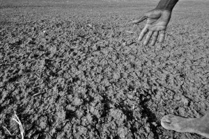 Drought conditions in parts of India. Photo: Pushkarv/Wikimedia Commons