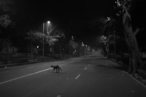 A still from the film Cities of Sleep