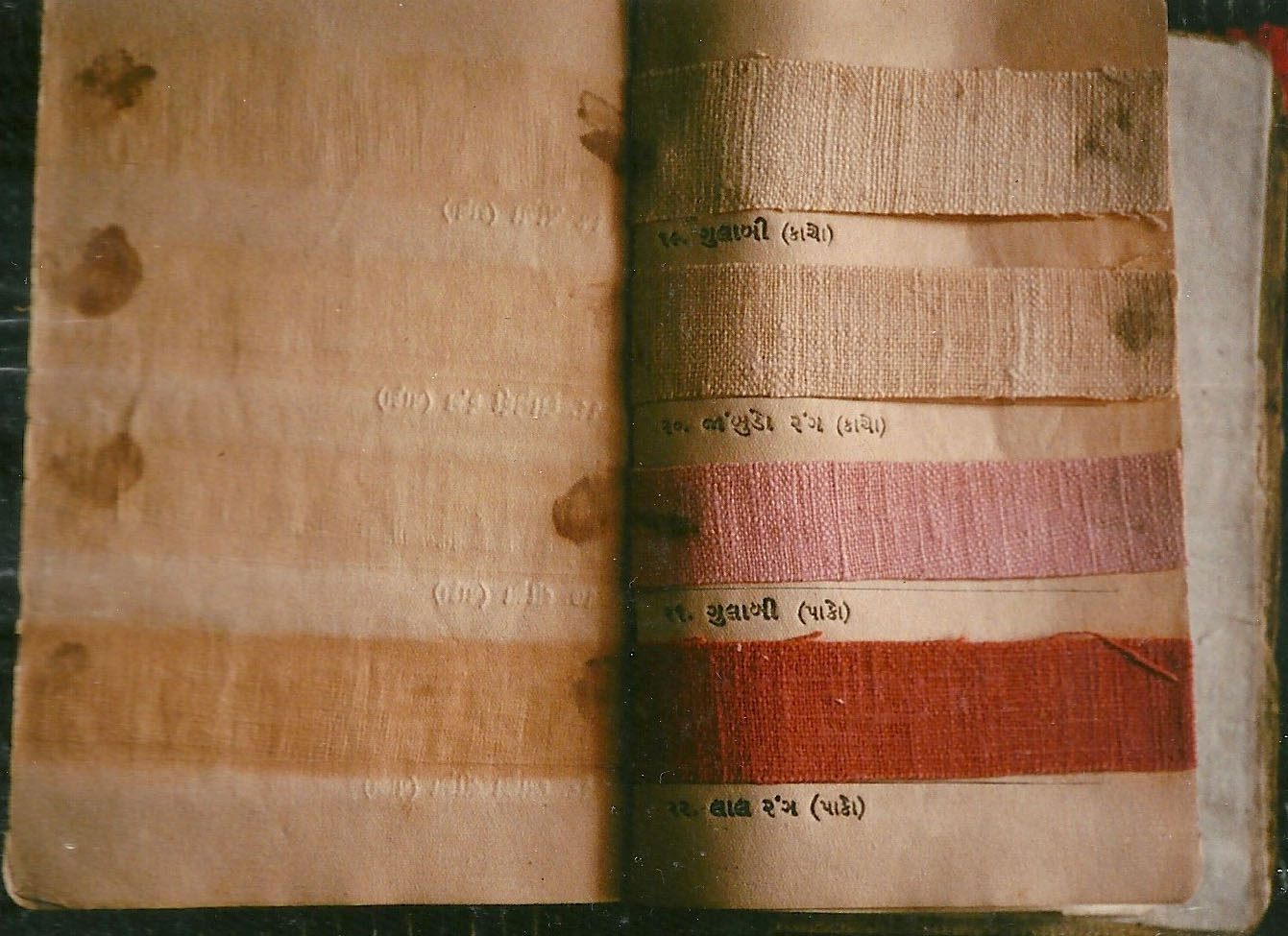 Pages from Gandhi's book on natural dyes and khadi. Credit: Carmen Artigas