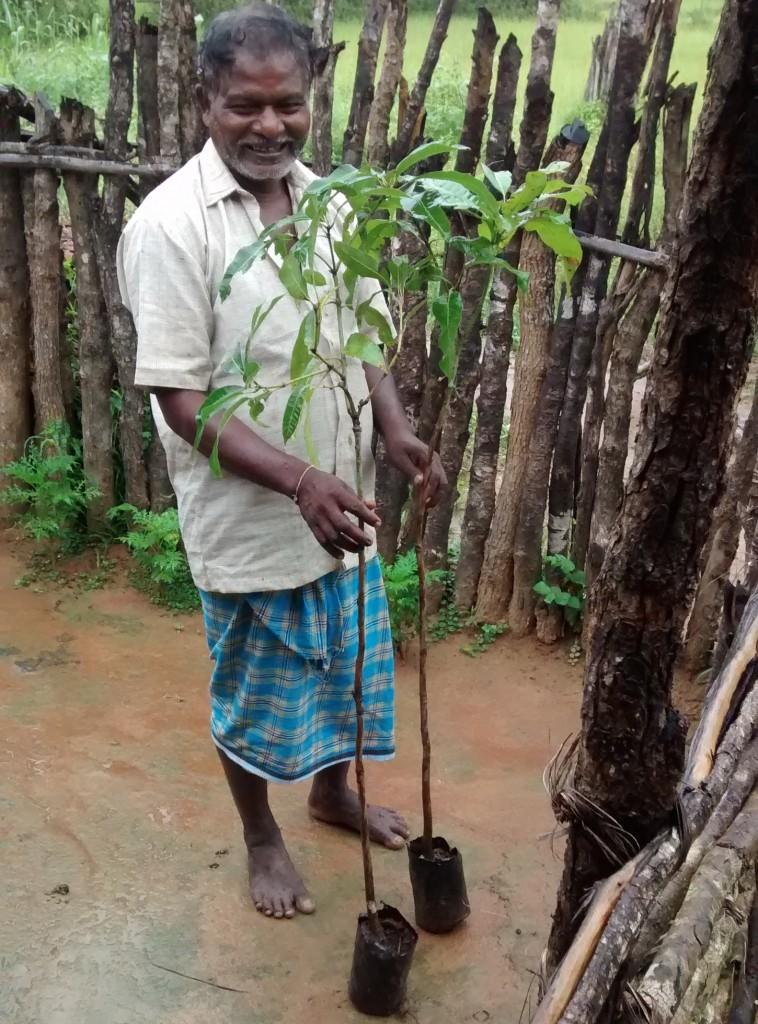 Apka Chinnu with the mango saplings. Credit: Raksha Kumar