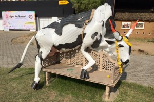 The plastic cow which taken away by police from the Jaipur Art Summit