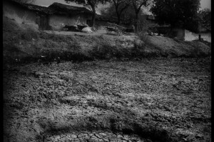 A dry pond in the center of a drought-hit village in Bundelkhand. Credit: Balazs Gardi