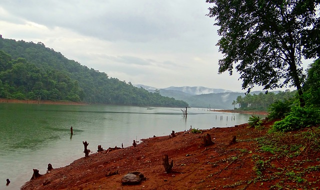 Dams in Central Western Ghats Affecting Catchment of Perennial Rivers: Study