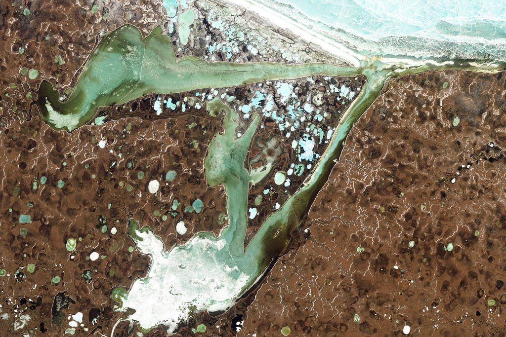 Omulyakhskaya and Khromskaya Bays lie along the northern Siberian coast, southeast of the Lyakhov Islands. The northerly location almost guarantees ice in the adjacent East Siberian Sea, and permafrost blankets the land around the bays. Caption and credit: Landsat, GSFC/Flickr, CC BY 2.0