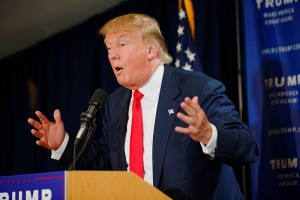 Donald Trump at a political rally. Credit: Michael Vadon