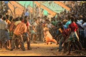 Nothing Cruel About It? Jallikattu in Tamil Nadu. Credit: Thaya Nanth/Flickr CC 2.0