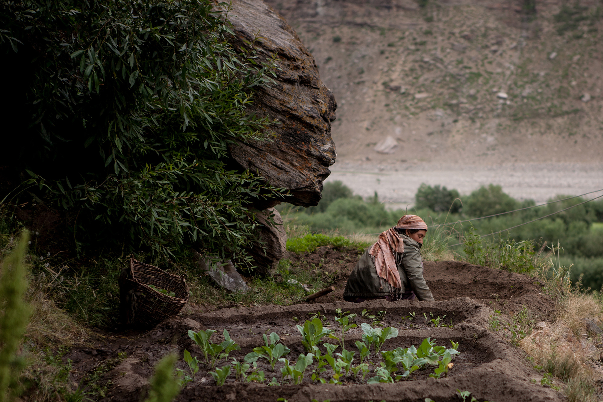 Contrary to Government Line, New J&K Land Laws Can Effect Sweeping Changes