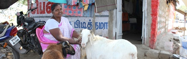 What Tamil Women Want in 2016: State Support for Older Women