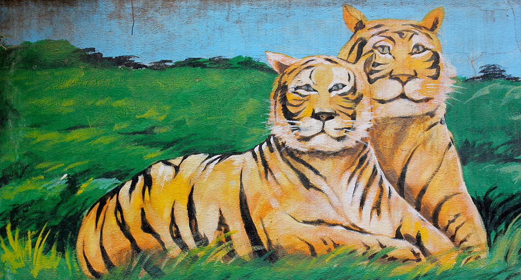A mural depicting two tigers, in J.P. Nagar, Bengaluru. Credit: nagarjun/Flickr, CC BY 2.0