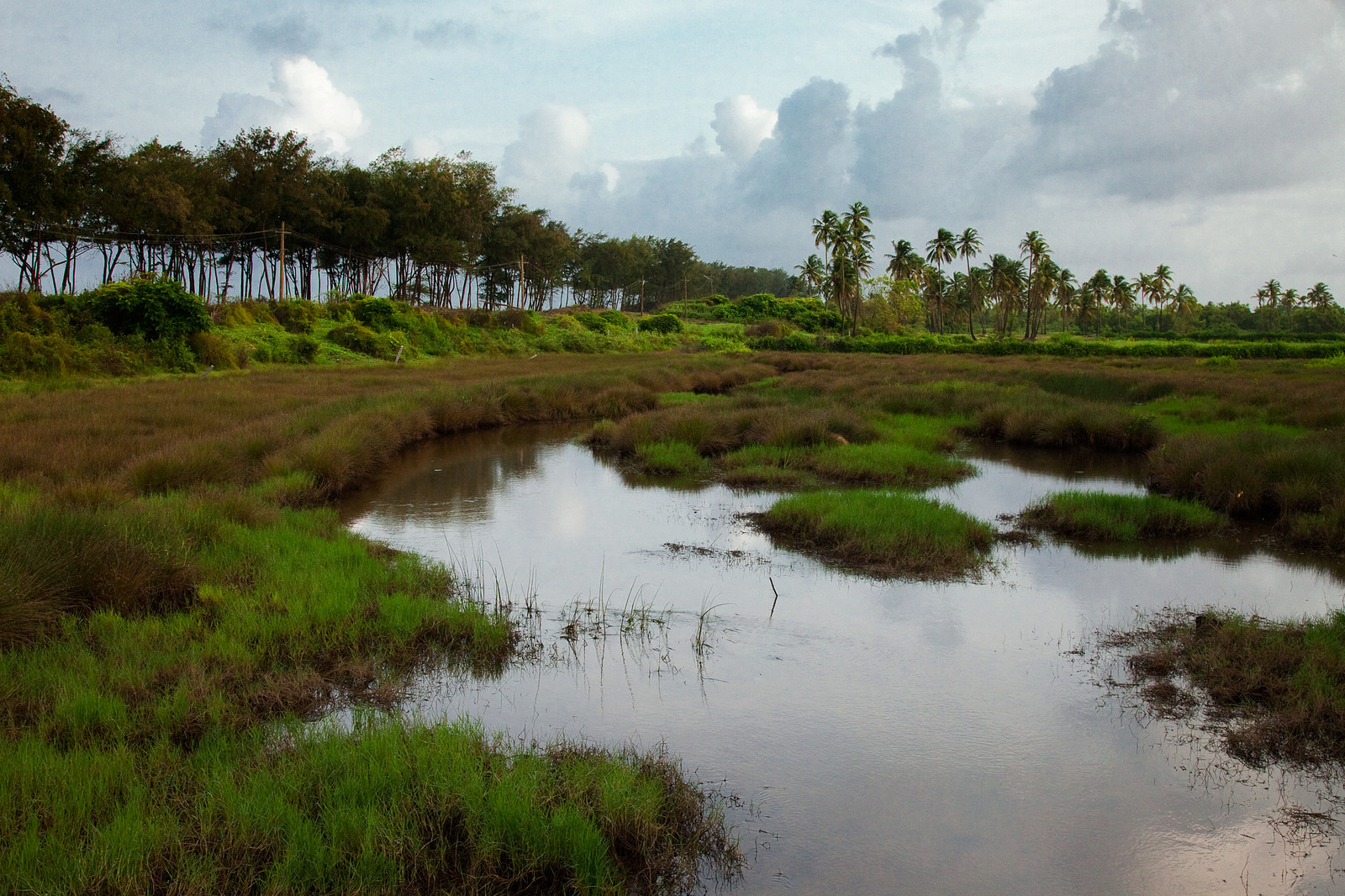 India's Haphazard Quality Monitoring Strategies are Letting Water Pollution Get Worse