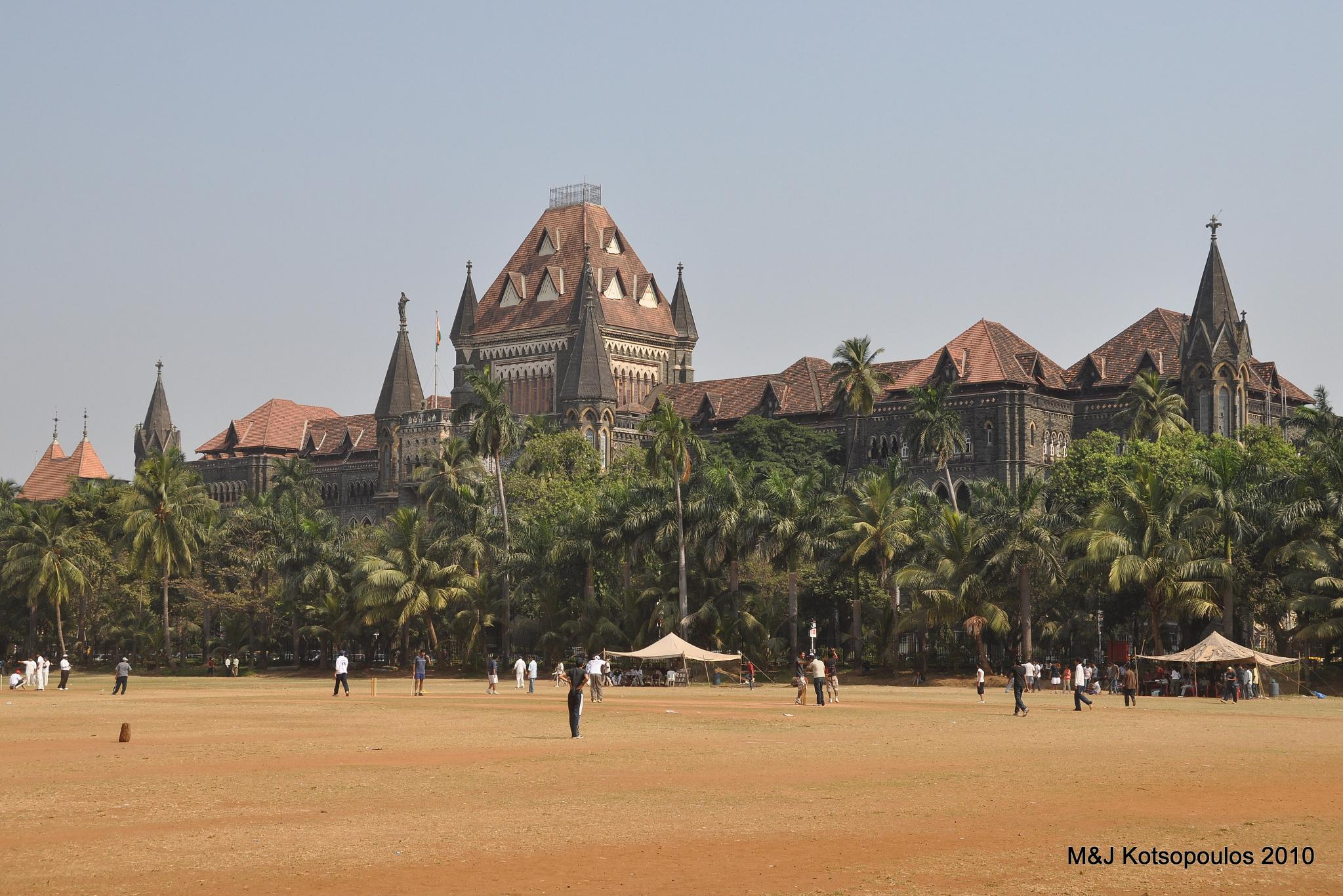 The Bombay High Court Wants a Free Hit in the IPL. But Where's the No Ball?