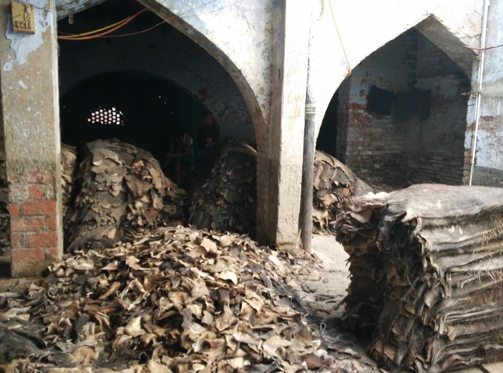 A raw hide godown in Pech Bagh. Credit: Jahnavi Sen
