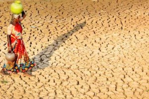 File photo of a drought hit area. Credit: PTI