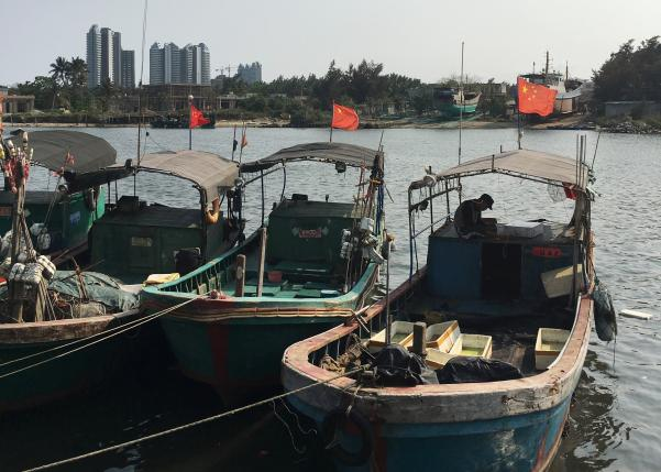 Fishing Boat, Cargo Ship Collision Leaves 17 Missing: Chinese State Media