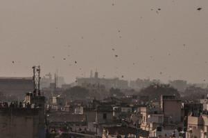 ahmedabad cropped