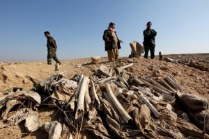 Bones, suspected to belong to members of Iraq's Yazidi community, are seen in a mass grave on the outskirts of the town of Sinjar, November 30, 2015. Credit: Reuters/Ari Jalal/Files