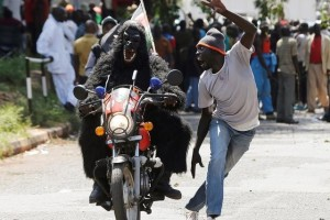 A supporter of Kenya's opposition Coalition for Reforms and Democracy (CORD), dressed in a gorilla suit rides a motorbike as he leaves after attending a rally to mark Kenya's Madaraka Day, the 53rd anniversary of the country's self rule, at Uhuru Park grounds in Nairobi, Kenya, June 1, 2016. Credit: Reuters/Siegfried Modola