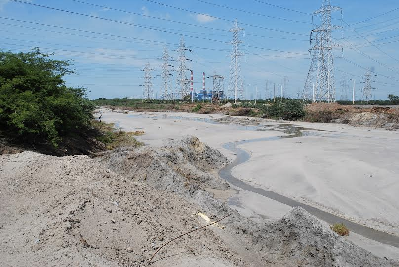 Toxic coal ash from North Chennai Thermal Power Station has destroyed acres of biologically productive wetlands. Credit: Coastal Resource Centre, Chennai, 2015
