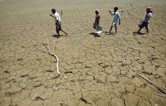 Labourers walk through a parched land of a dried lake on the outskirts of Tripura April 23, 2013. Credit: Reuters/Jayanta Dey/Files