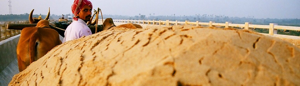 Holding His Ground Against the Sand Raiders of Tamil Nadu