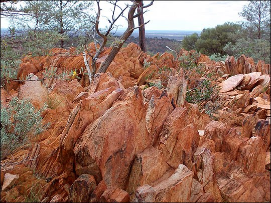 sandstone rocks in Jack Hills in Western Australia, in which 4.4 billion year old zircon crystals were found. Source: Author provided