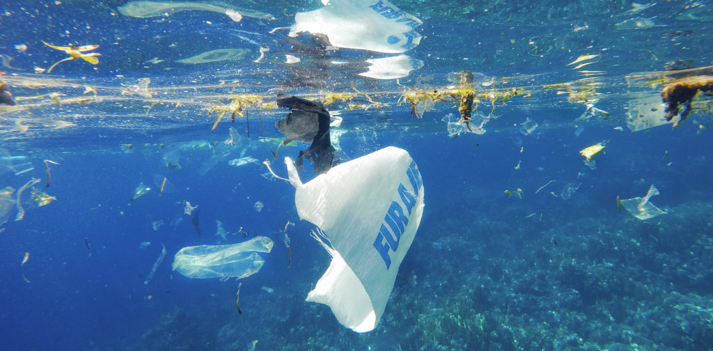Plastic Poisons Ocean Bacteria That Produce 10% of the World's Oxygen