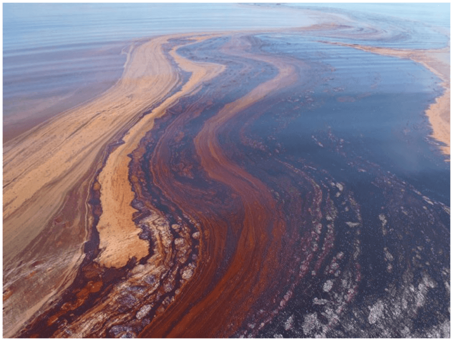 Can We Harness Bacteria to Help Clean Up Future Oil Spills?