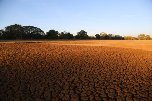 Dry river bed in Sri Lanka. Credits: Biodiversity International/Flickr/CC BY-NC-ND 2.0