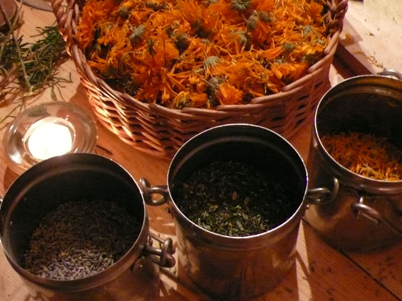Centre Approves Ayurvedic Drug – But Its Science is Missing