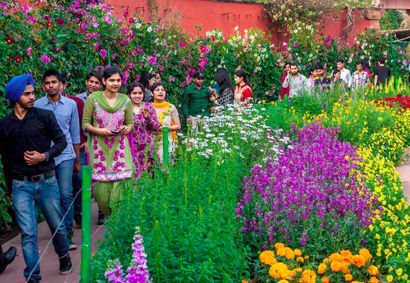 The lakhs of visitors who file through the formal gardens in the spring little know that months of painstaking planning and hard labour have gone into creating this floral spectacle. From the brown flowerbeds of September to the rainbow colours and scents of February, it is the malis whose quiet and unremitting work makes the garden glow. Credit: Narendra Bisht