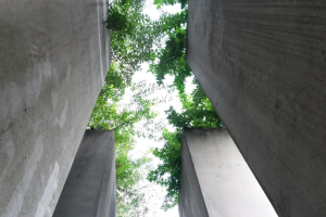 A vertical shot of a section of the pillars in the 'Garden of Exile'.