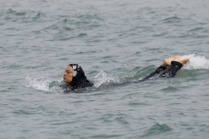 A swimmer wearing a burkini. Credit: Reuters