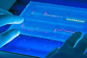 Looking at molecular DNA. Credit: snre/Flickr, CC BY 2.0 (PCR)