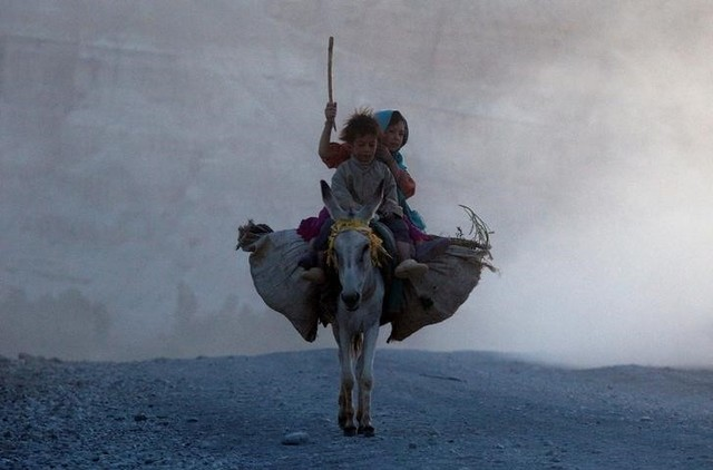 Ethnic Afghan Hazara children return home on a donkey to their village on the outskirts of Bamiyan, located in central Afghanistan August 15, 2009. Credit: Adrees Latif /Reuters/Files