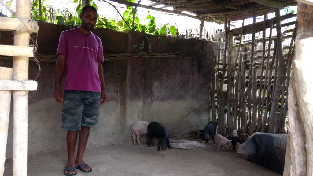 Ananta Mahanta at a sty behind his house at the camp. Credit: Sangeeta Barooah Pisharoty