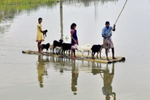 A flood affected village of Murkata in Morigaon district of Assam. Credit:PTI