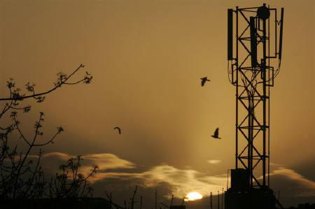 Telecom  Regulator Calls Time-Out as Reliance Jio-COAI Battle Turns Anti-Consumer - The Wire