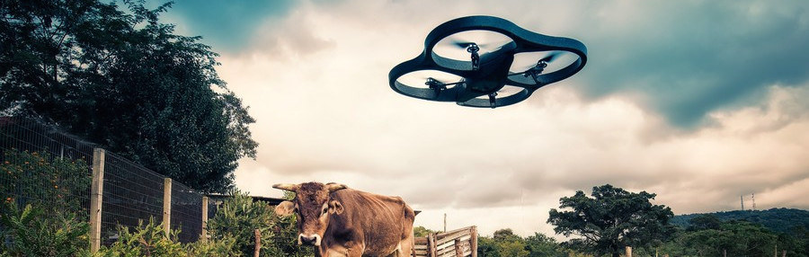 Why Drones Are the Latest Buzz in Agriculture