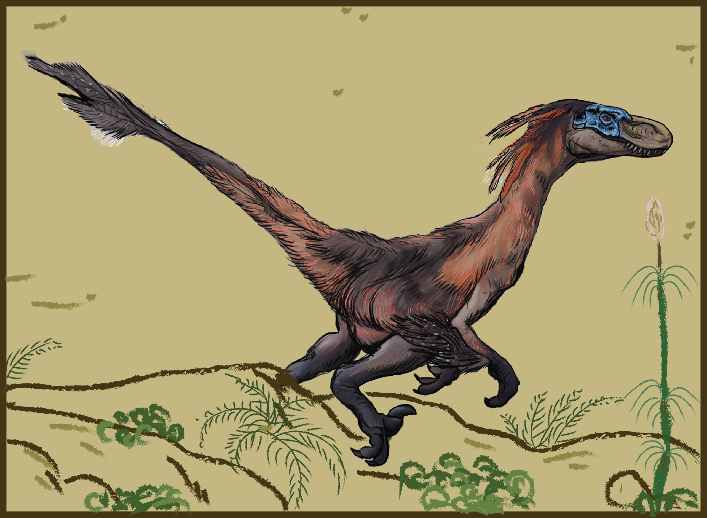 A more accurate depiction of a velociraptor according to what we know today. Credit: Ita Mehrotra