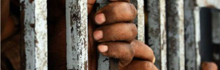 Emulating Rajasthan's Open Jails Model Could Ease Overcrowding in Indian Prisons