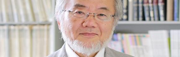 How Yoshinori Ohsumi's Stroke of Genius Empowered 21st Century Medicine