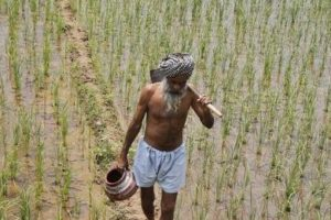 punjab_farmers_reuters1