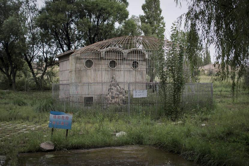 A cage that once held animals in 404 City's Nuclear City Park. Credit: Xu Haifeng/Sixth Tone