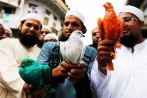 Muslims hold pigeons during a march to celebrate India's Independence Day in Ahmedabad, India, August 15, 2016. Credit: Reuters/Amit Dave