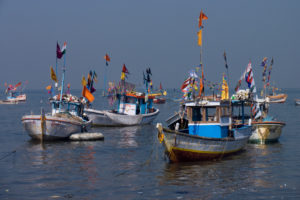 Indian fishing boats. Credit: Wikimedia Commons