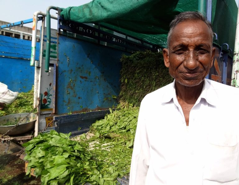 Chandrabhan Jhode with his spinach crop at the Nagpur APMC: a good monsoon had led to a good harvest this year and the farmers were hoping for decent returns after successive years of drought in many regions of the country. Credit: PARI