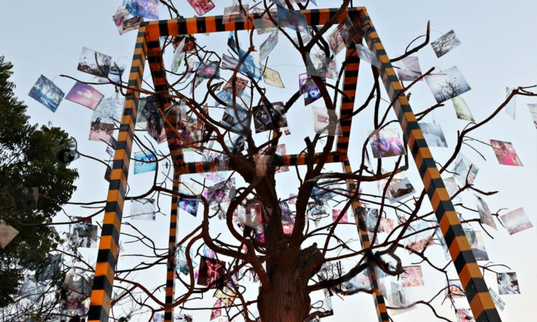 Karachi-based artists contributed to an installation in Napa Credit: Dawn